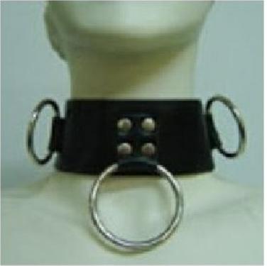 Leather Collar with Ring Padlock Key - obojek s očky