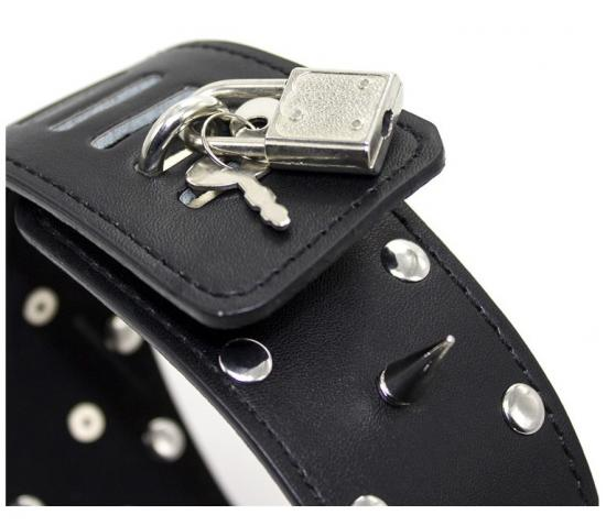 Leather Collar with leash